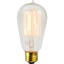 60W Squirrel-cage Bulb