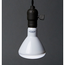 Awake & Alert Biological LED Bulb