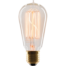 40W Caged Bulb