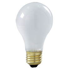 100W Shatterproof A19 Standard-Base Bulb - 2-Pack
