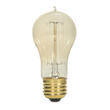 Cage-Style Vintage 40-Watt Filament Bulb