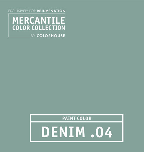 C9851 merc denim04