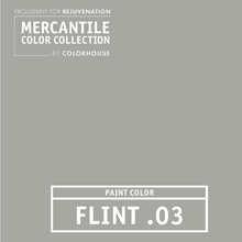 Flint.03