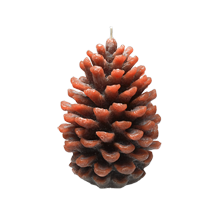 Small Holiday Pinecone Candle