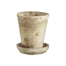 Small Antiqued-White Rose Pot