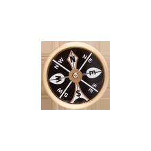 Large Brass Pocket Compass