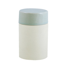 Shell Bisque Tall Canister - Seafoam