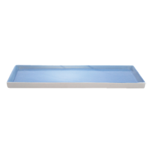 Shell Bisque Tray - Blue