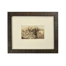 Vintage Framed Photo of Antler Shelter c1930s