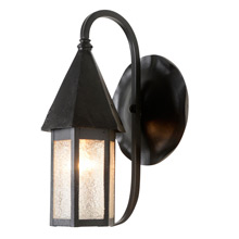 Darling Porch Sconce with Lily Pad Back Plate, C1920s